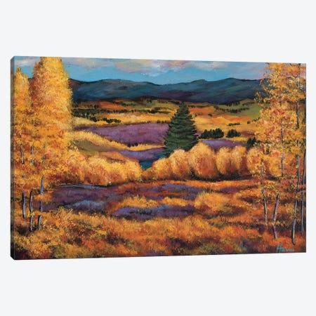 Colorado Canvas Print #JHR15} by Johnathan Harris Canvas Print