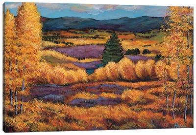 Colorado Canvas Art Print