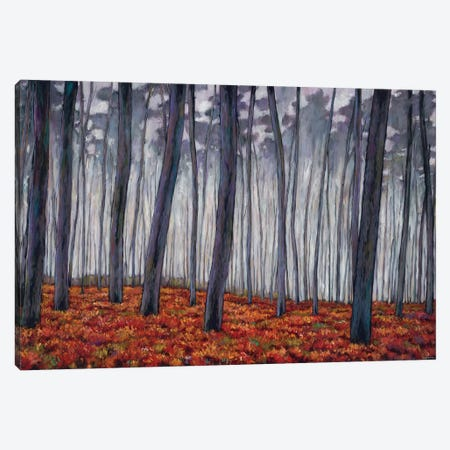 Crimson Walk Canvas Print #JHR17} by Johnathan Harris Canvas Art Print