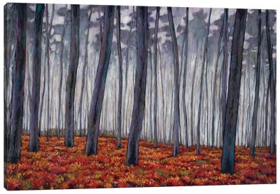 Crimson Walk Canvas Art Print
