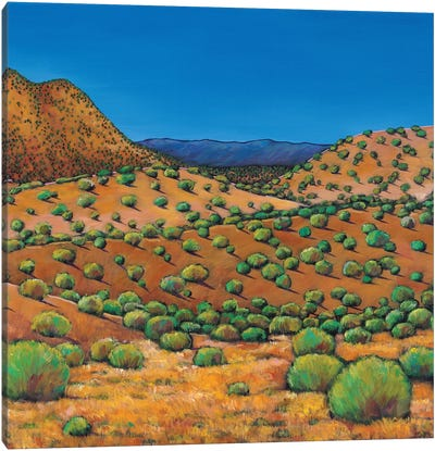 Desert Afternoon Canvas Art Print