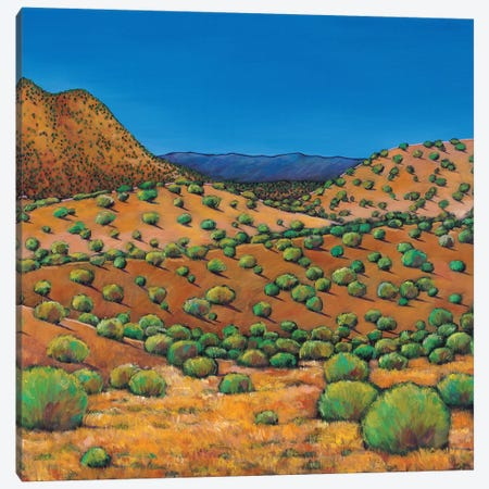 Desert Afternoon 3-Piece Canvas #JHR20} by Johnathan Harris Canvas Art Print