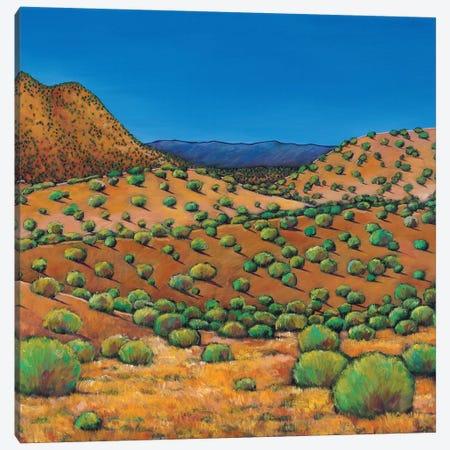 Desert Afternoon Canvas Print #JHR20} by Johnathan Harris Canvas Art Print