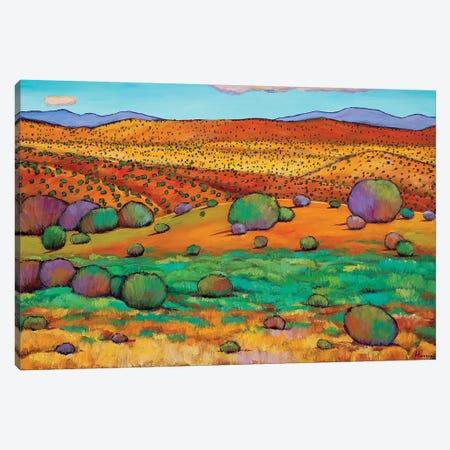 Desert Day Canvas Print #JHR22} by Johnathan Harris Canvas Art Print