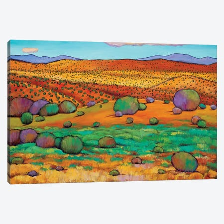 Desert Day 3-Piece Canvas #JHR22} by Johnathan Harris Canvas Art Print