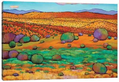 Desert Day Canvas Art Print
