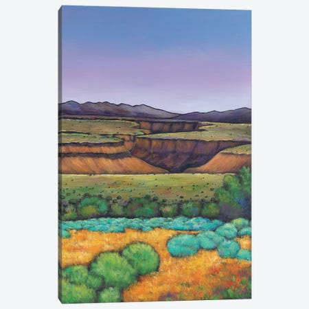Desert Gorge 3-Piece Canvas #JHR23} by Johnathan Harris Canvas Print