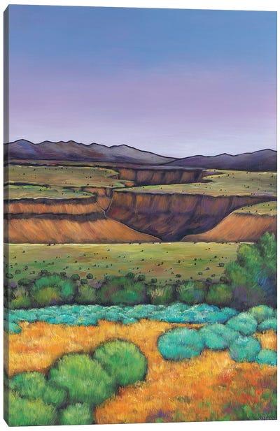 Desert Gorge Canvas Art Print