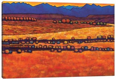 Desert Harmony Canvas Art Print