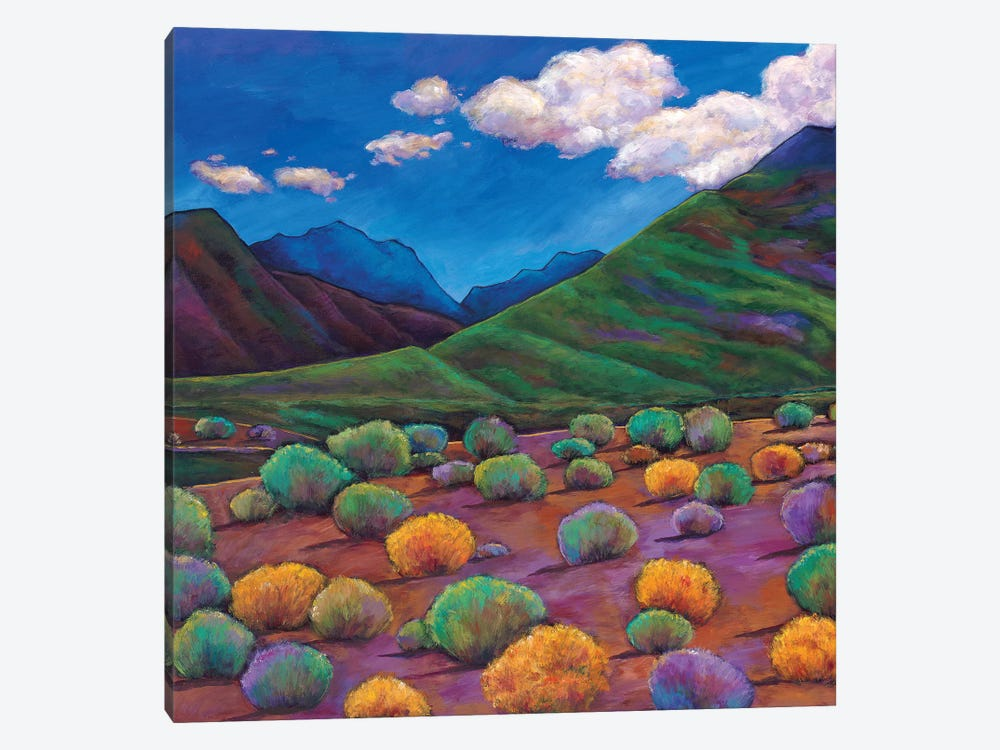 Desert Valley by Johnathan Harris 1-piece Art Print