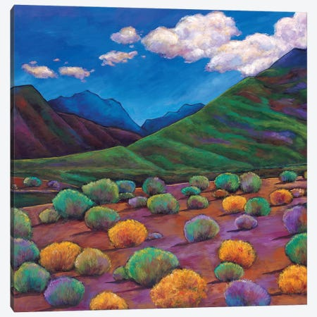 Desert Valley Canvas Print #JHR25} by Johnathan Harris Canvas Artwork