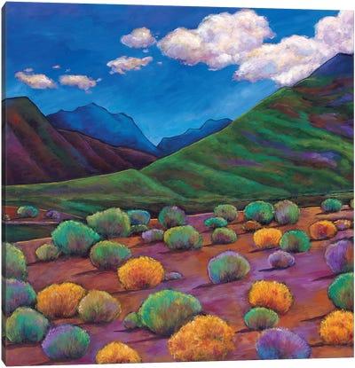 Desert Valley Canvas Art Print