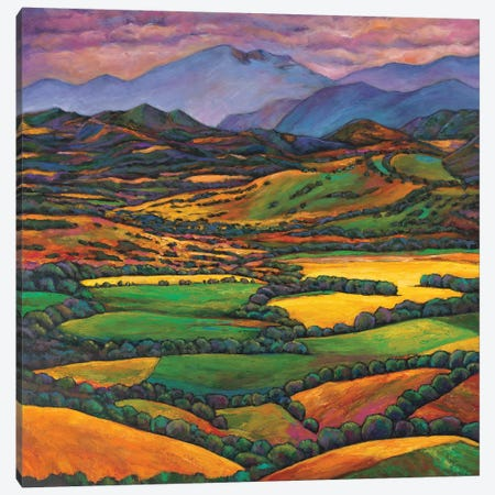 Draped In A Dream Canvas Print #JHR26} by Johnathan Harris Canvas Wall Art