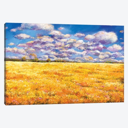 Fields Of Gold Canvas Print #JHR31} by Johnathan Harris Canvas Wall Art