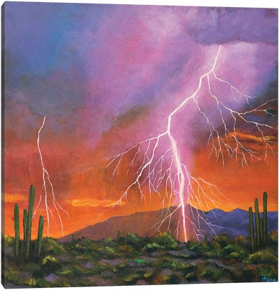 Fire In The Sky Canvas Art Print