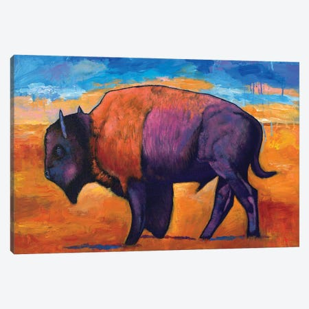 High Plains Drifter Canvas Print #JHR36} by Johnathan Harris Art Print