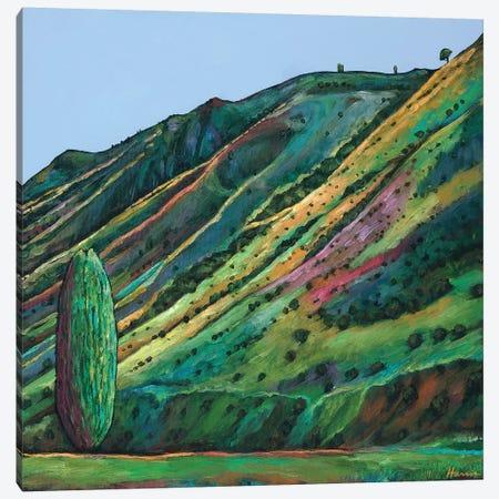 Jackson Hole Canvas Print #JHR38} by Johnathan Harris Canvas Art