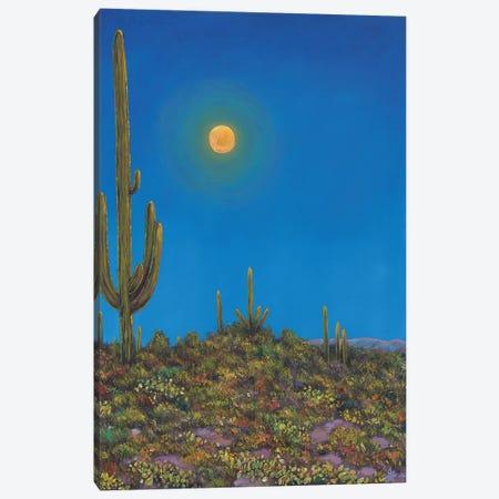 Moonlight Serenade Canvas Print #JHR41} by Johnathan Harris Art Print