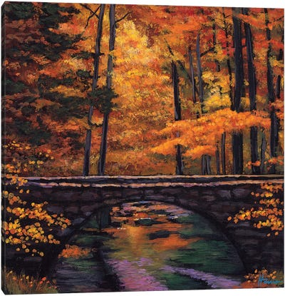 Ozark Stream Canvas Art Print