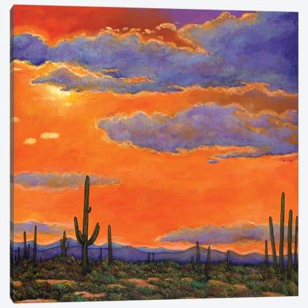 Saguaro Sunset Canvas Print #JHR54} by Johnathan Harris Art Print