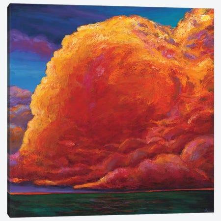Skydance Canvas Print #JHR58} by Johnathan Harris Canvas Art