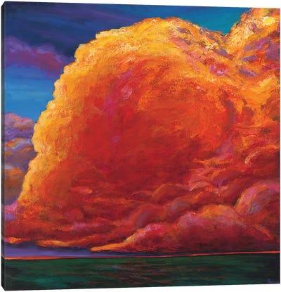 Skydance Canvas Art Print