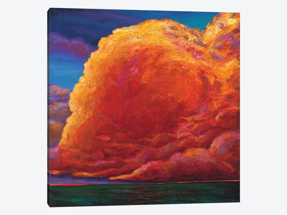 Skydance by Johnathan Harris 1-piece Canvas Print