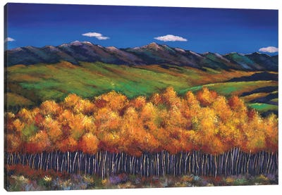 Aspen In The Wind Canvas Art Print