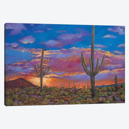 Southern Arizona Evening Canvas Print #JHR60} by Johnathan Harris Art Print