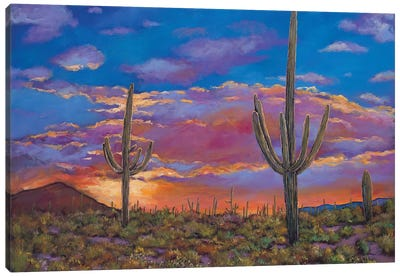 Southern Arizona Evening Canvas Art Print