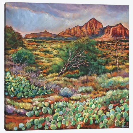 Surrounded By Sedona Canvas Print #JHR61} by Johnathan Harris Canvas Print