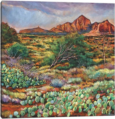 Surrounded By Sedona Canvas Art Print