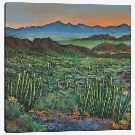 Westward Canvas Print #JHR65} by Johnathan Harris Canvas Wall Art