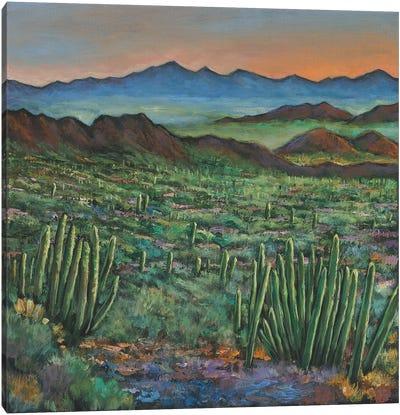 Westward Canvas Art Print