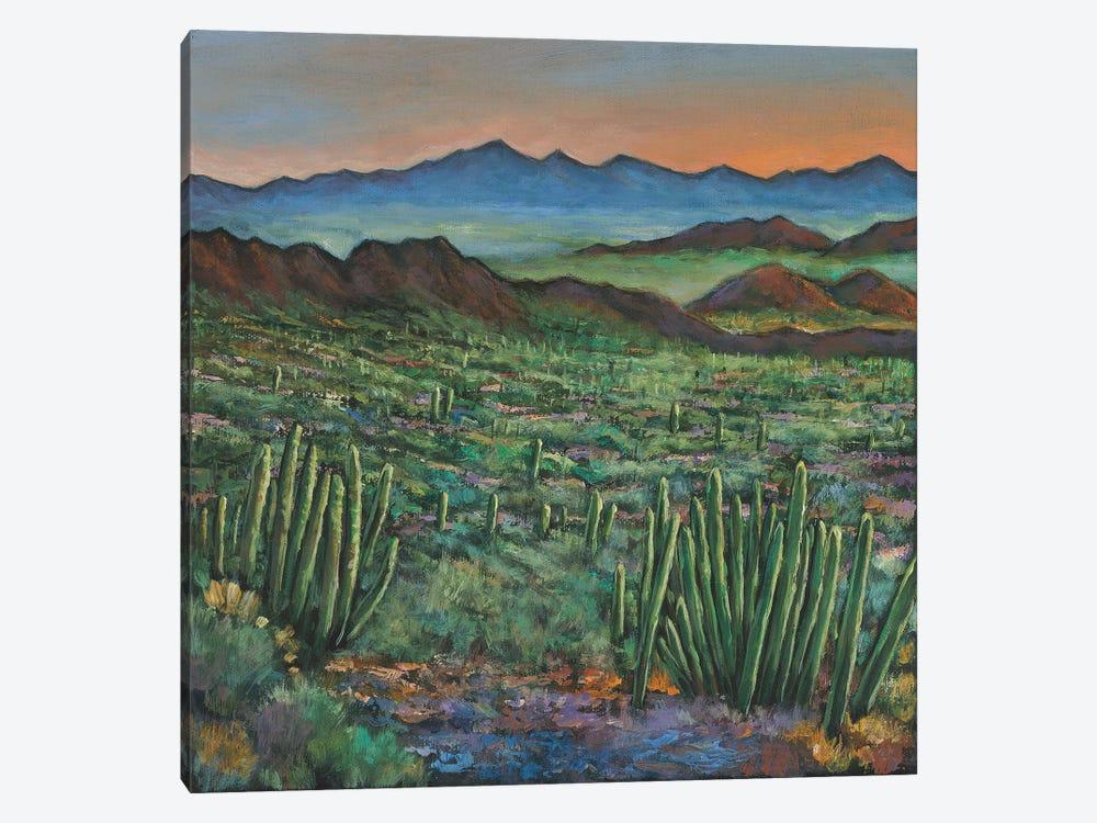 Westward by Johnathan Harris 1-piece Canvas Print