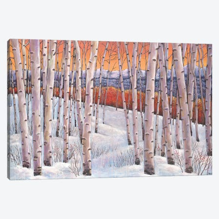 Winters Dream Canvas Print #JHR66} by Johnathan Harris Canvas Wall Art