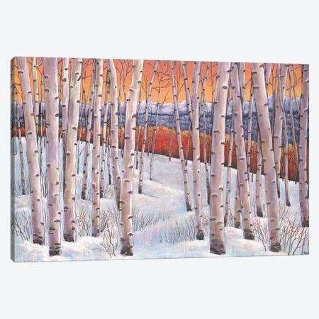 Winters Dream Canvas Print #JHR66} by Johnathan Harris Canvas Wall Art
