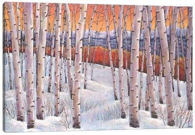 Winters Dream Canvas Art Print