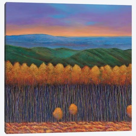 Aspen Perspective Canvas Print #JHR6} by Johnathan Harris Canvas Print