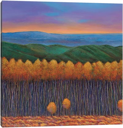 Aspen Perspective Canvas Art Print