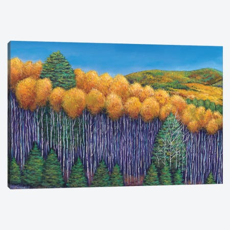 Aspen Slopes Canvas Print #JHR7} by Johnathan Harris Canvas Art Print