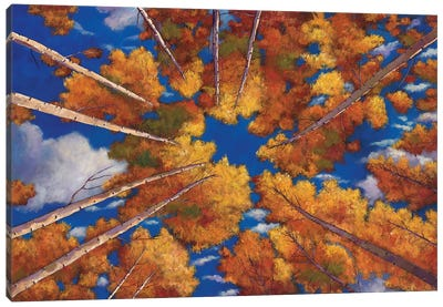 Aspen Vortex Canvas Art Print