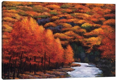 Autum Stream Canvas Art Print