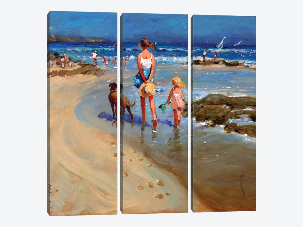 Edge Of The Tide by John Haskins 3-piece Canvas Art Print