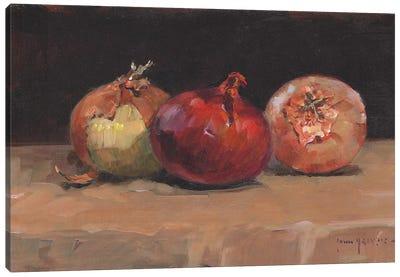 Onions Canvas Art Print