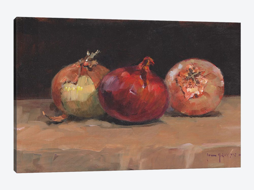 Onions by John Haskins 1-piece Canvas Wall Art