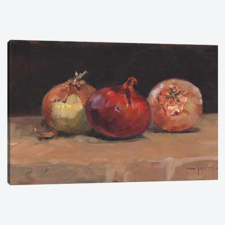 Onions Canvas Print #JHS43} by John Haskins Canvas Artwork