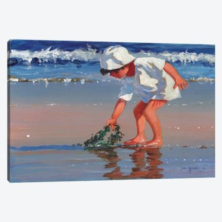 Serious About Seaweed Canvas Print #JHS48} by John Haskins Canvas Wall Art