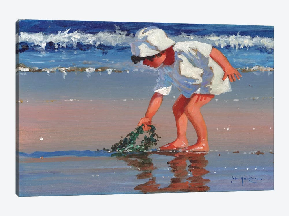 Serious About Seaweed by John Haskins 1-piece Canvas Print