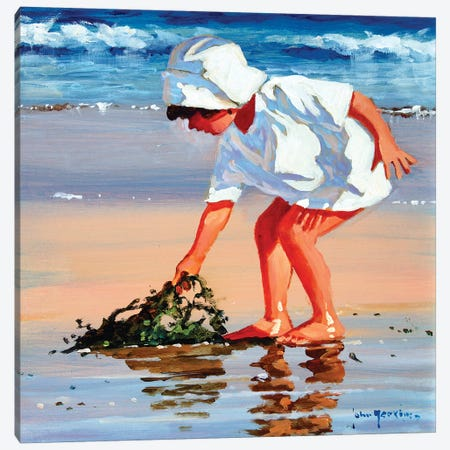 Serious About Seaweed Square Canvas Print #JHS49} by John Haskins Canvas Art